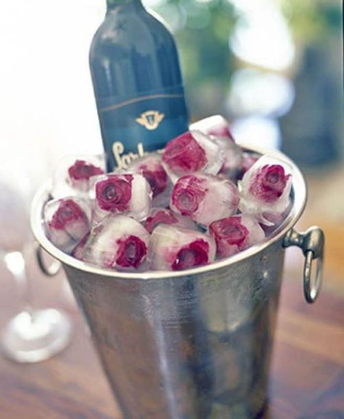edible flower icecubes 4