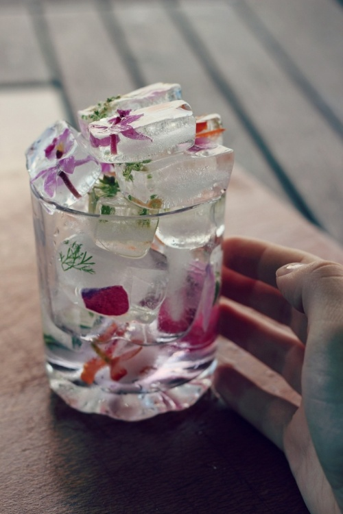 edible flower icecubes